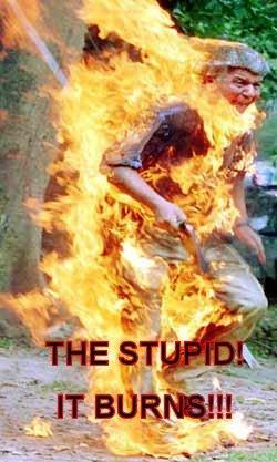 stupid-burns.jpg