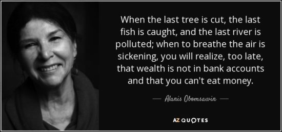 alanis-obomsawin-quote