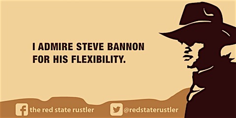 bannon-flexible.jpg