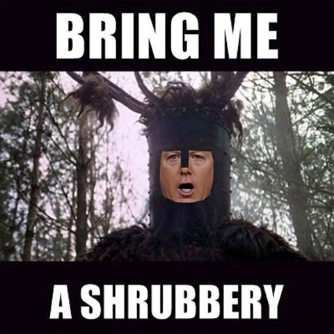 bring-me-a-shrubbery.jpg