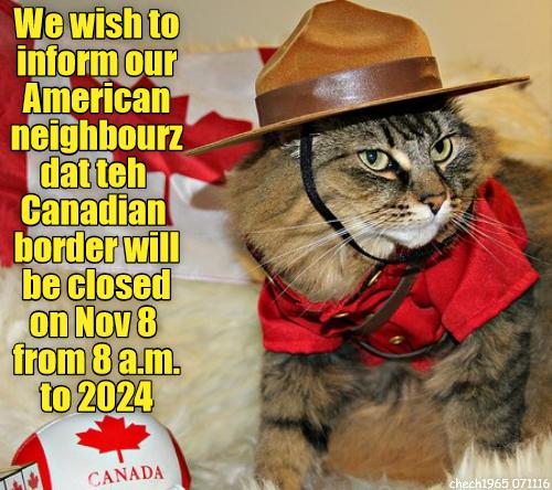 canadian-kitty