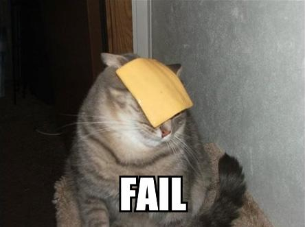 cheese-cat-fail.jpg