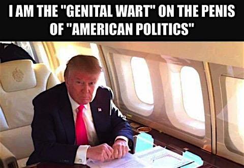 drumpf-genital-wart.jpg