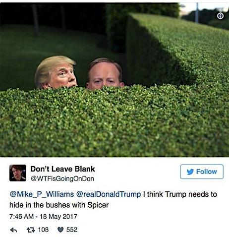 drumpf-in-bushes.jpg