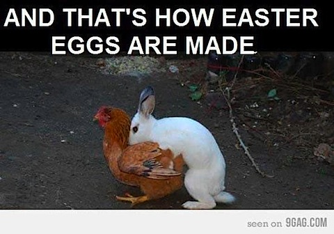 easter-eggs-made.jpg