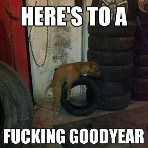 fucking-goodyear
