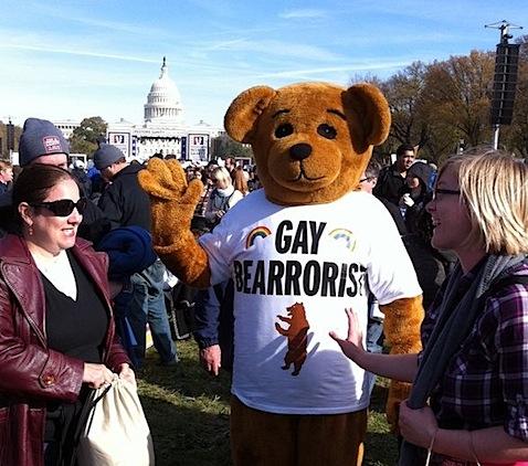 gay-bearrorist.jpg