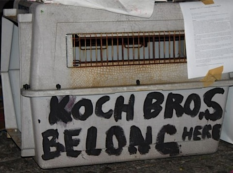 koch-kennel.jpg