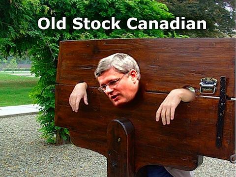 old-stocks-harpo.jpg