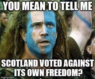 scotland-voted-against.jpg