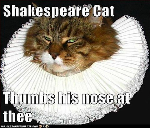 shakespeare-cat.jpg