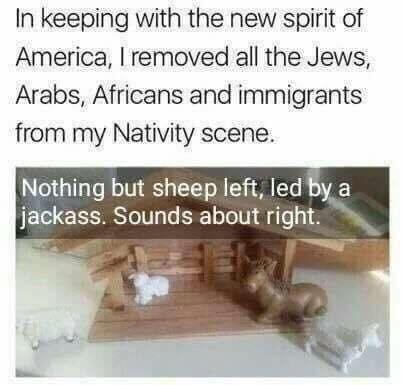 sheep-jackass.jpg